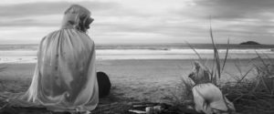 Screen shot from Bridgers' 'Savior Complex' music video showing her on the beach with a dog wearing capes.